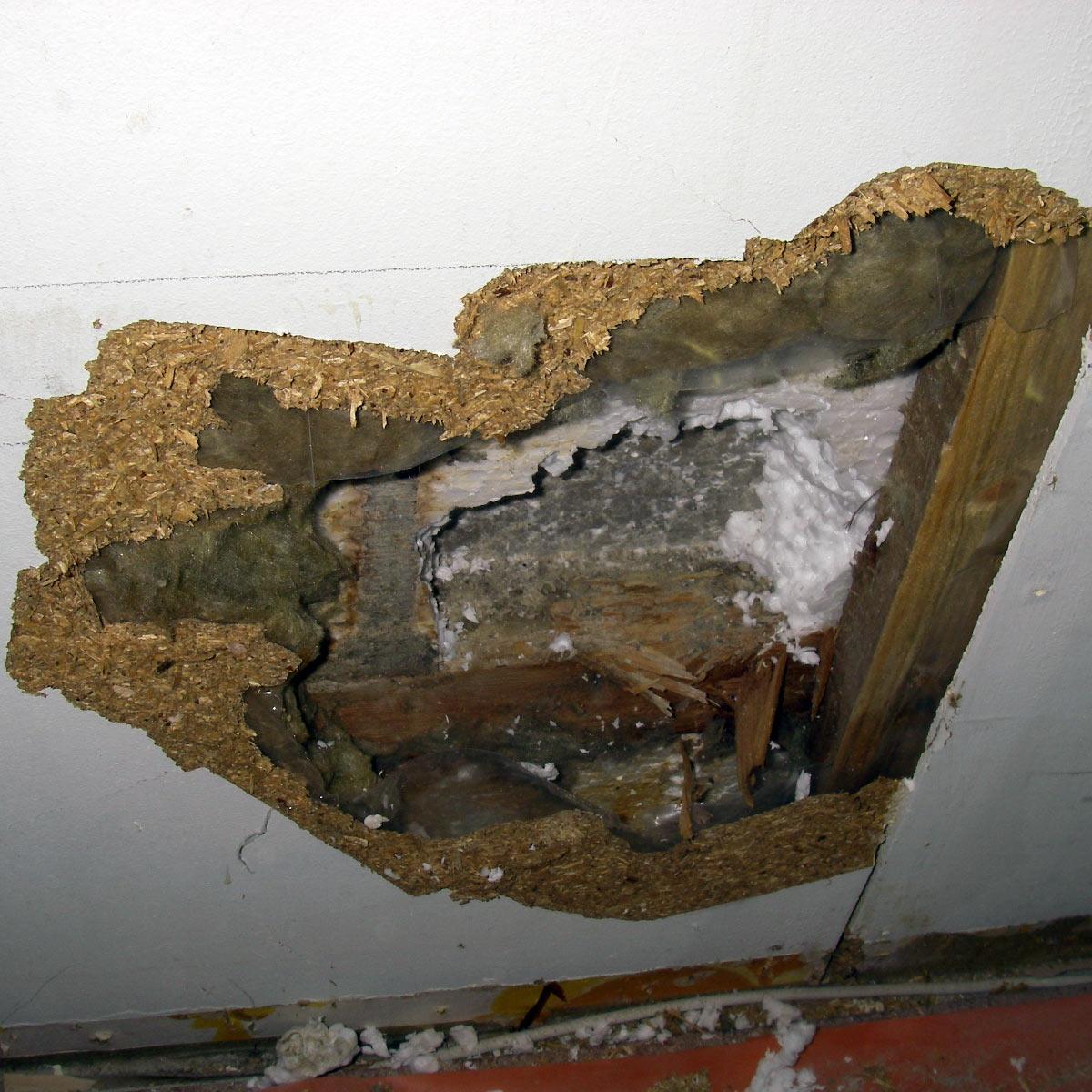 Maanvastaisen ulkoseinän rakenteet ovat kosteusvaurioituneet.